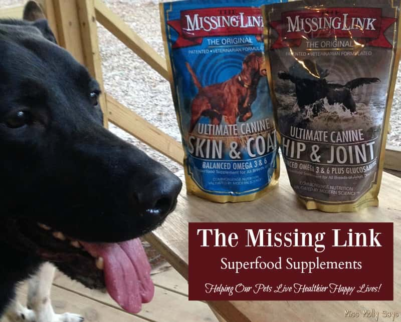 The Missing Link Superfood Supplements, Helping Our Pets Live Healthier Happy Lives