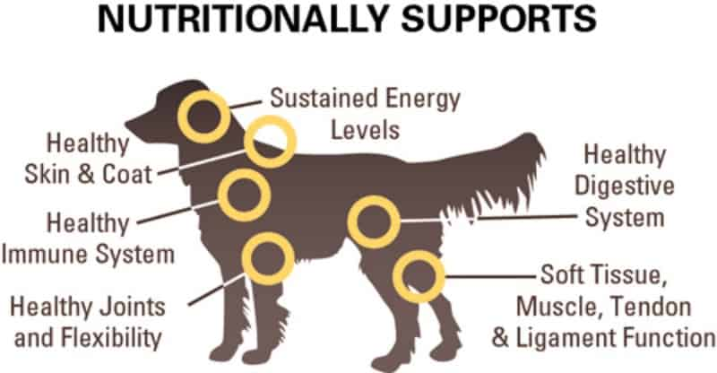 The Missing Link Ultimate Canine Hip and Joint formula diagram