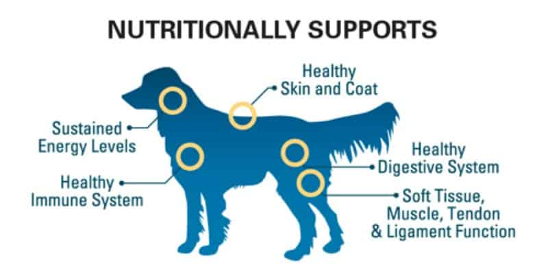 The Missing Link Ultimate Canine skin and coat formula diagram