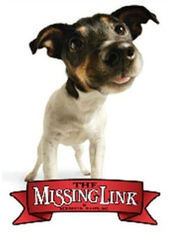 the-missing-link-logo