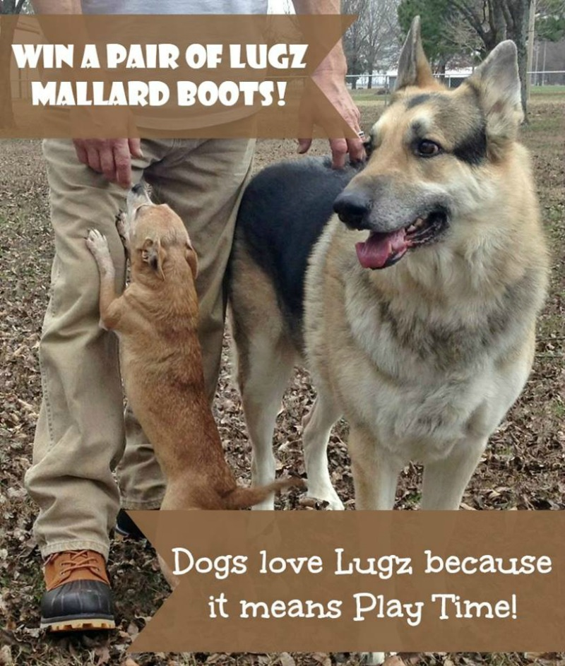 Lugz Mallard Boots in choice of color Giveaway! Perfect for Hikes & Playtime with the Pups! US Only Ends 2/24