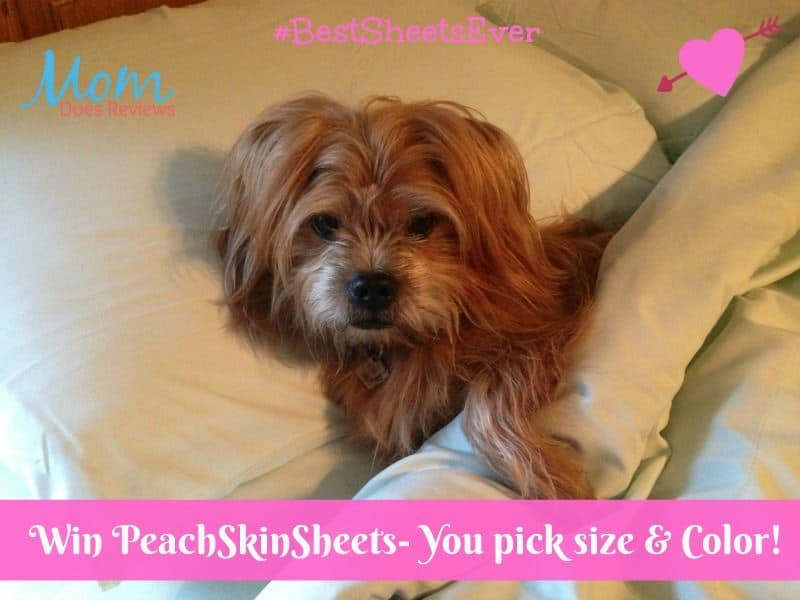 Win PeachSkinSheets Luxuriously Soft Moisture-Wicking Sheets in choice of size and color! #BestSheetsEver US Only Ends 2/28