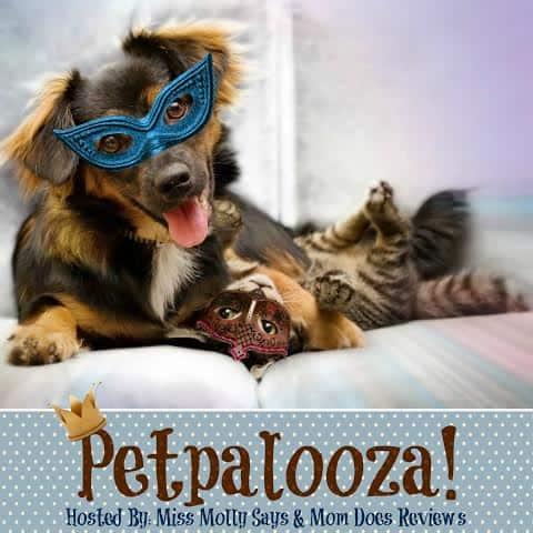 2nd Annual Petpalooza Pet Event