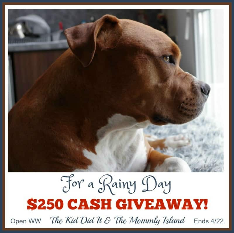 $250 Cash Giveaway - For a Rainy Day button