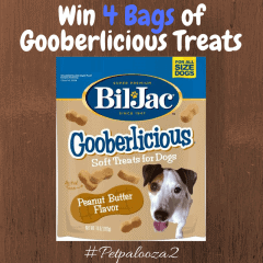 Win 4 bags of Bil-Jac Gooberlicious Dog Treats! US Only Ends 4/4