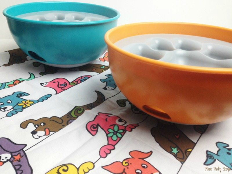 PAW5 Rock 'N Bowl Puzzle Feeder
