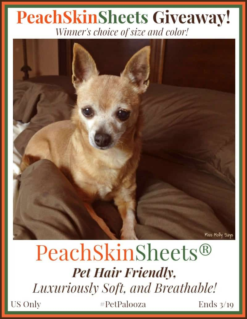 Win PeachSkinSheets in your choice of size and color! #Petpalooza2