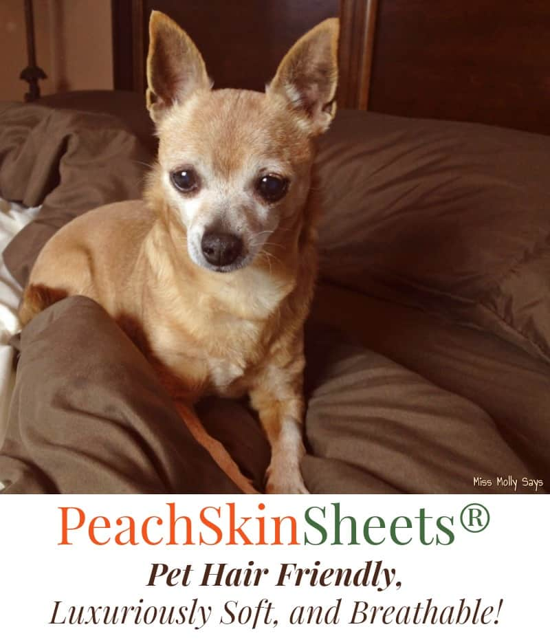 PeachSkinSheets are Pet Hair Friendly, Luxuriously Soft, and Breathable for Sweet Dreams! #Petpalooza2