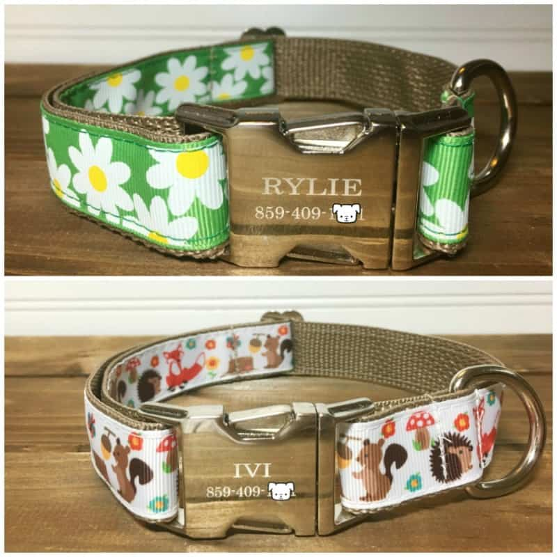 Rylie-Ivis-The-French-Dog-Collars