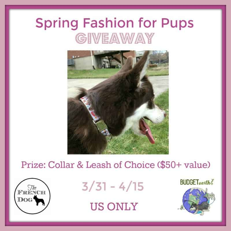 Spring Fashion for Pups S weepstakes