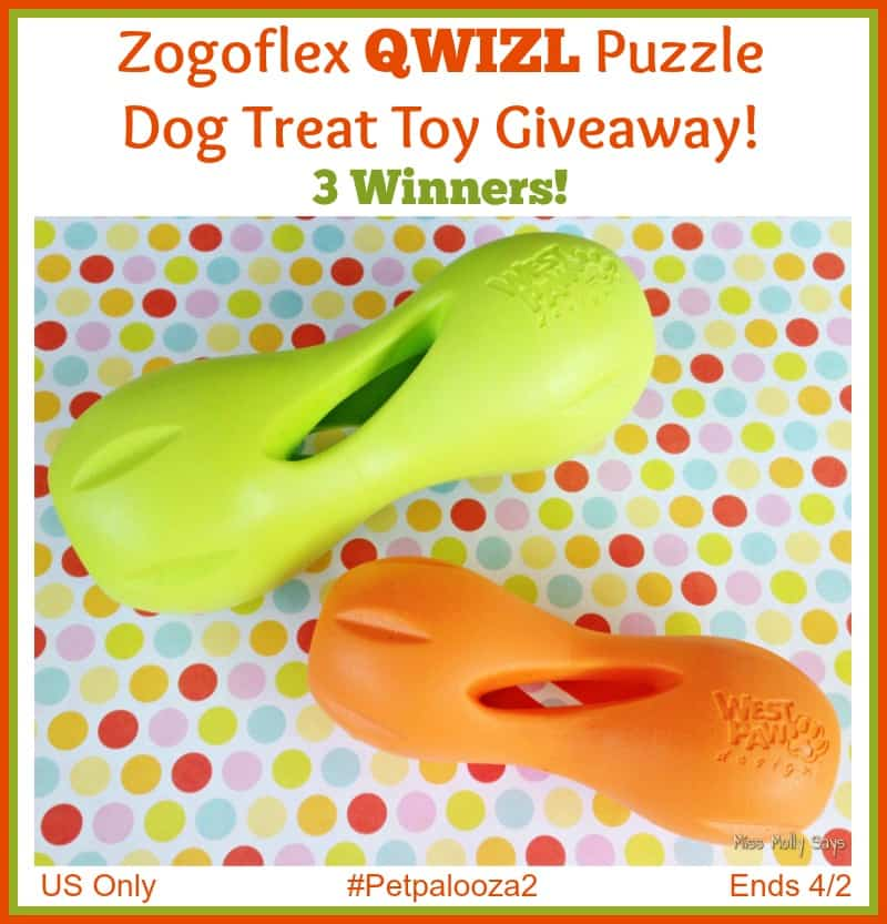 Win a Zogoflex QWIZL Puzzle Dog Treat Toy! 3 Winners! US Only Ends 4/2