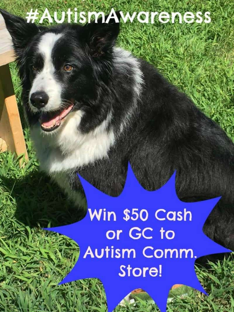 $50 Cash or GC to Autism Comm Store giveaway button