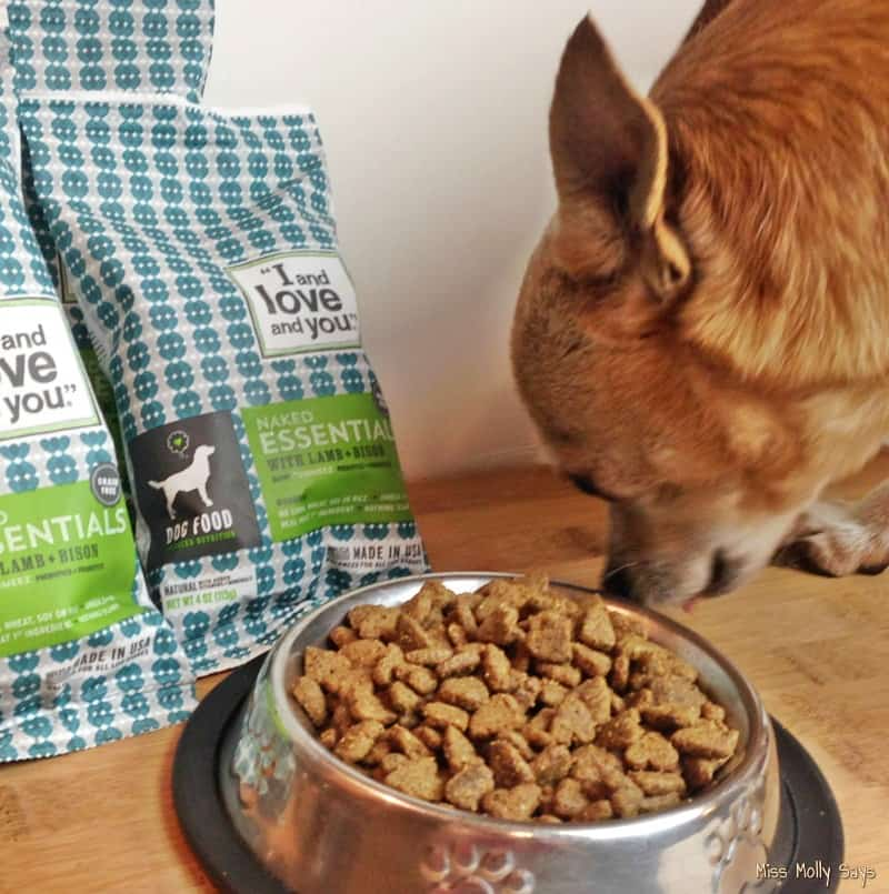 I and Love and You Naked Essentials Dog Food and Chihuahua eating