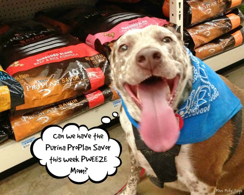 Purina Pro Plan Savor now available at Tractor Supply
