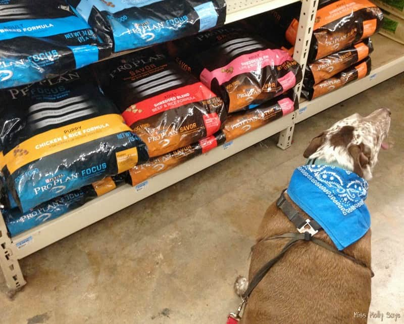 Purina Pro Plan at Tractor Supply