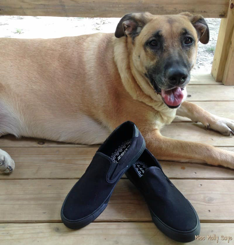 The Men's Lugz Clipper is a Pawsome Father's Day Gift!