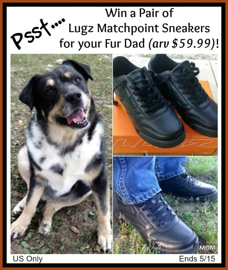 Win a pair of Men's Lugz Matchpoint Sneakers for your Fur Dad! US Only Ends 5/15