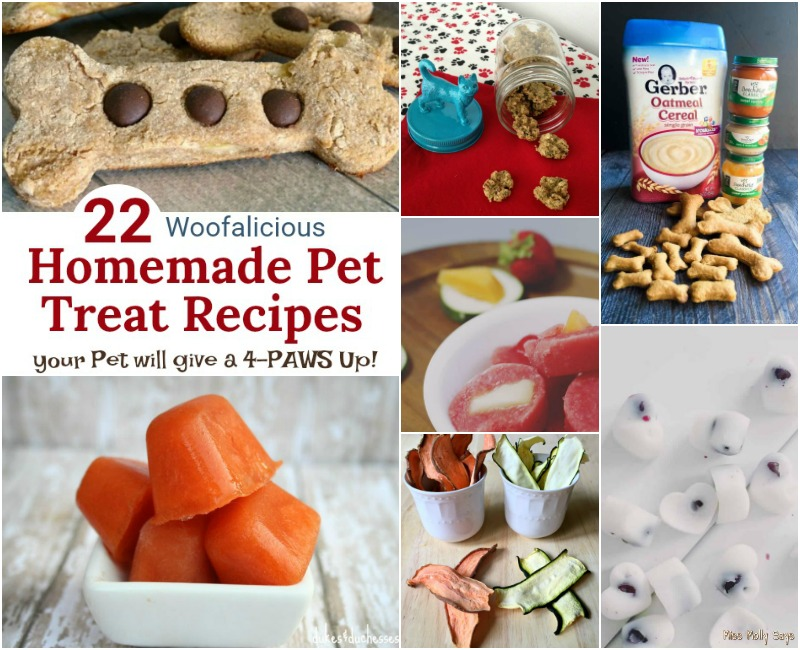 22 Woofalicious Homemade Pet Treat Recipes your Pet will give a 4-PAWS Up!