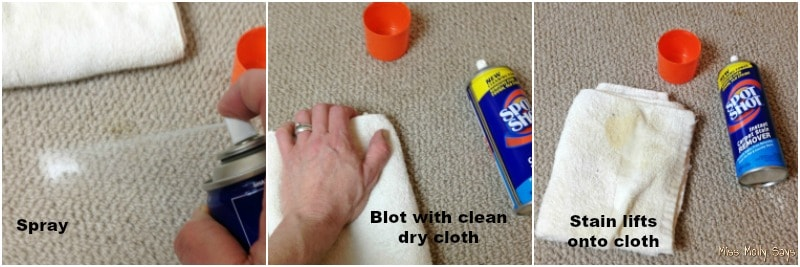 How to use Spot Shot Instant Carpet Stain Remover to clean stains