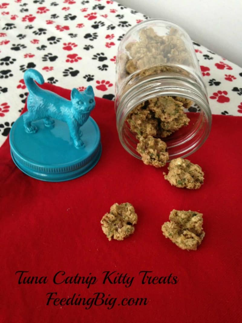 Tuna Catnip Kitty Treats