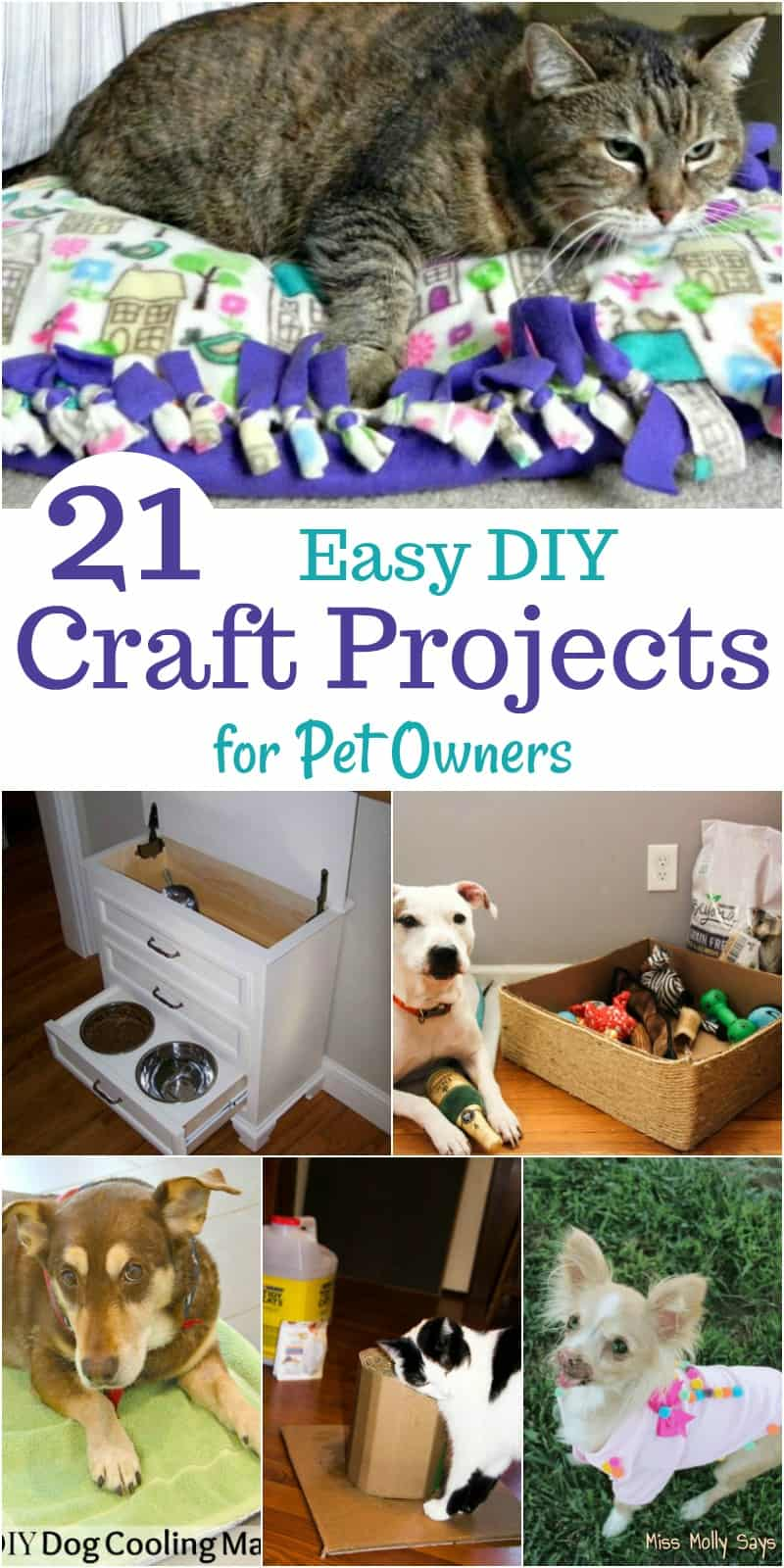 21 Easy DIY Craft Projects for Pet Owners