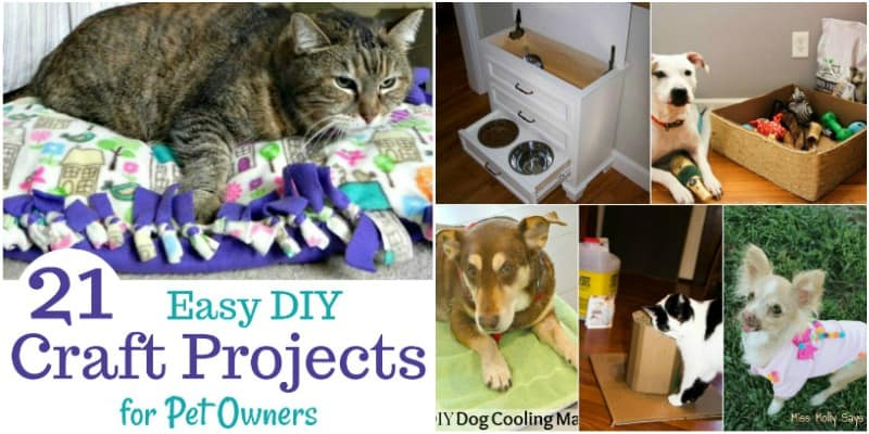 21 Easy DIY Craft Projects for Pet Owners!
