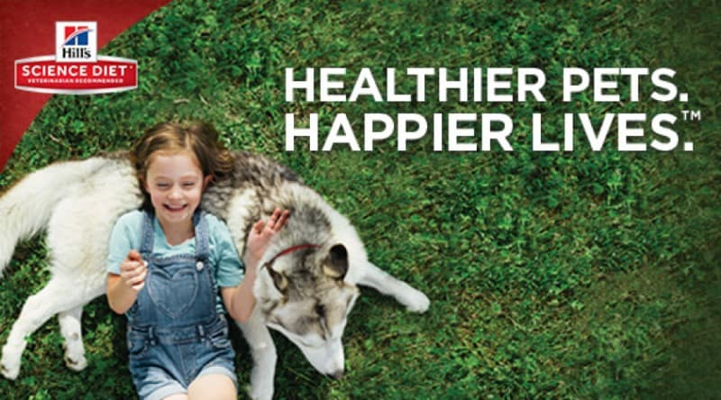 How You Can Have Healthier Pets. Happier Lives.™ + a Pawsome Sweepstakes! #HillsTransformingLives