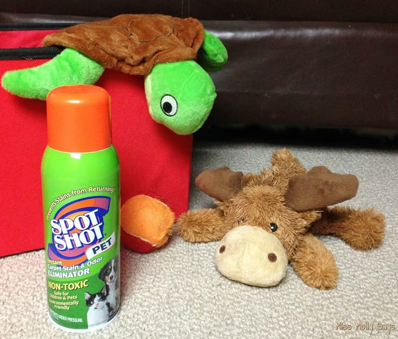 Remove Pet Urine Stains with Safe, Non-Toxic Spot Shot Pet Instant Carpet Stain & Odor Eliminator! #SpotShot