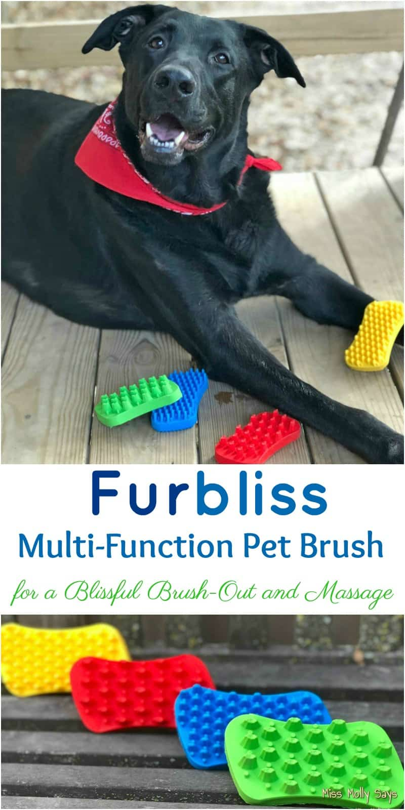 Furbliss Multi-Function Pet Brush for a Blissful Brush-Out and Massage