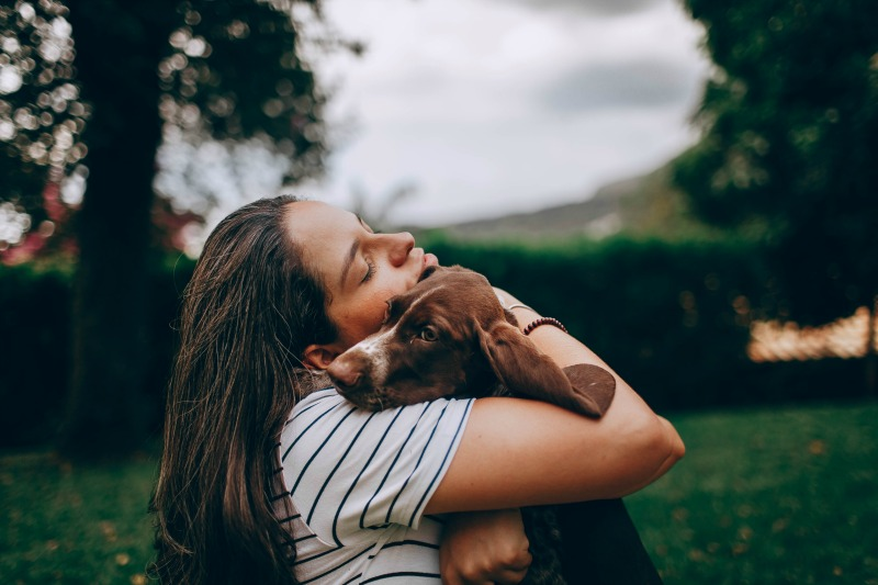 How You and Your Pet Can Heal Each Other
