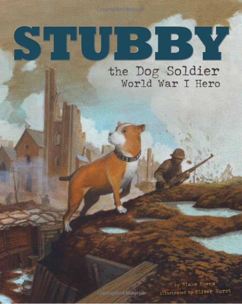 Image Result For Sgt Stubby An American Hero
