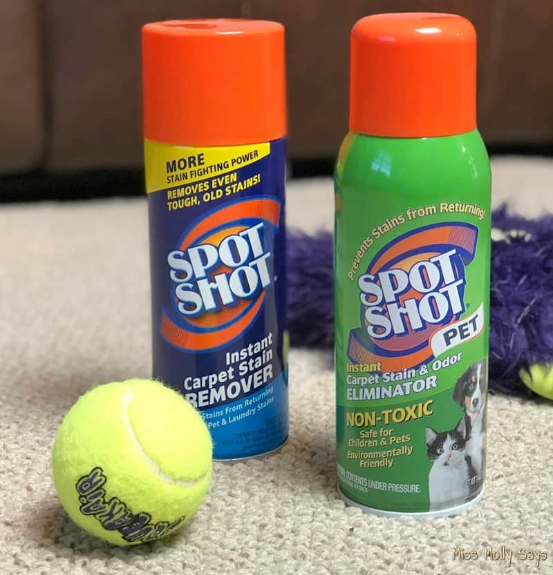 Spot Shot® Pet Instant Carpet Stain & Odor Eliminator