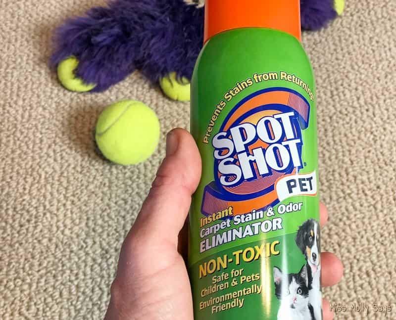 Spot Shot Pet