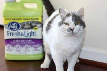 Litter for Good - Cat's Pride® Fresh & Light Ultimate Care®