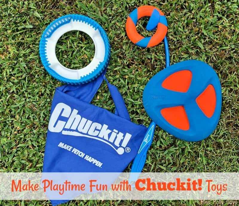 Chuckit! Ringchaser, Fetch Flight, Rugged Fetch Wheel