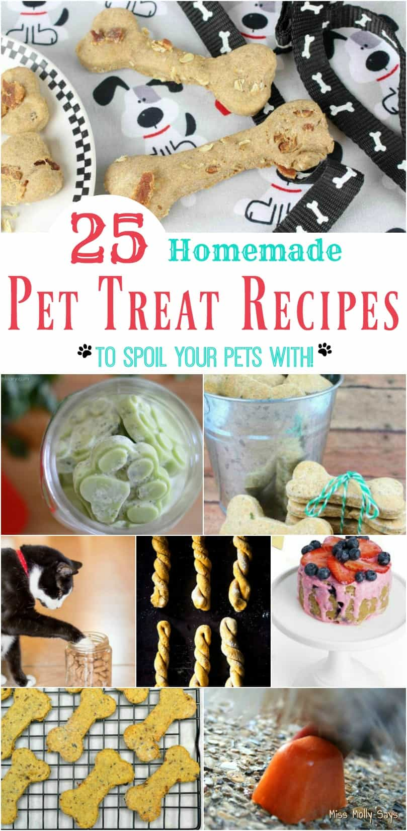 25 Homemade Pet Treat Recipes to Spoil Your Pets With