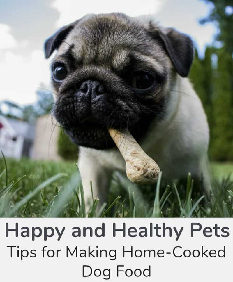 Happy and Healthy Pets, Tips for Making Home-Cooked Dog Food