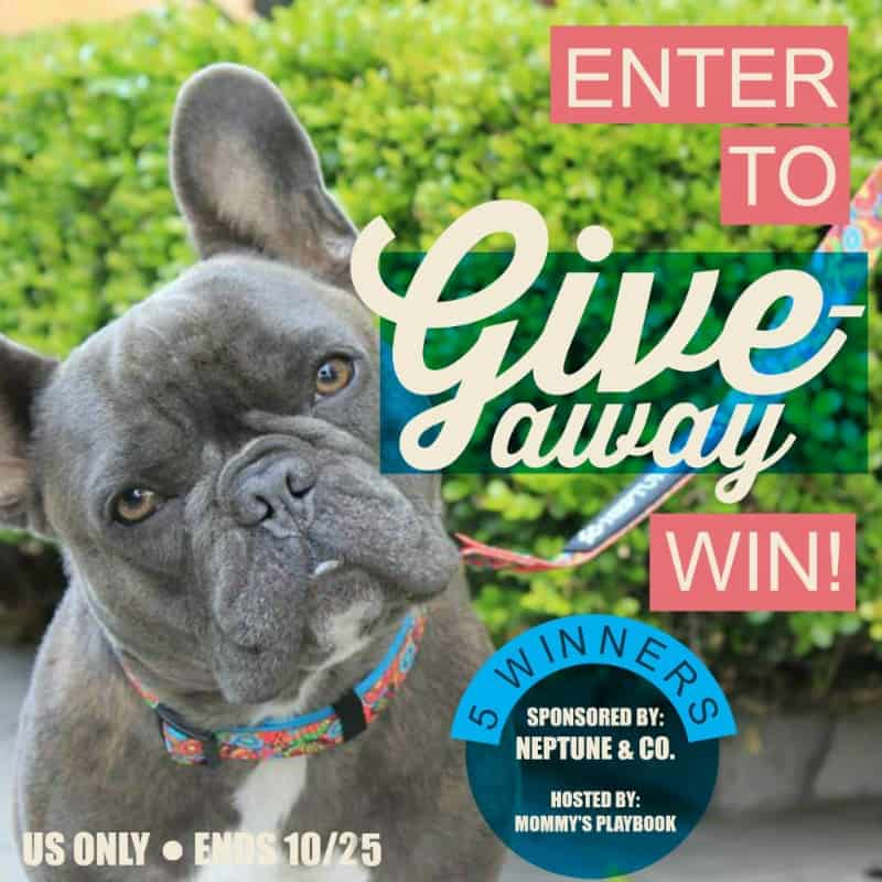 Neptune & Co. Giveaway Extravaganza! 5 WINNERS! US Only Ends 10/25