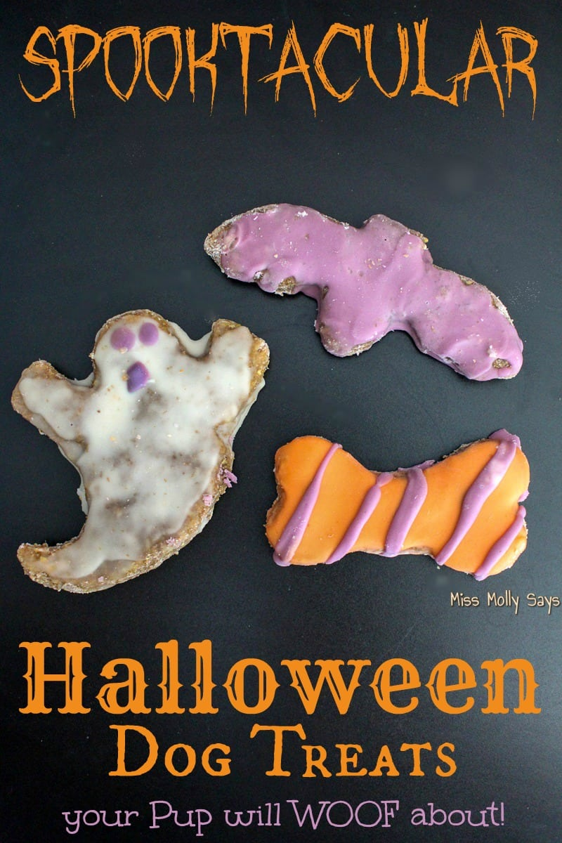 Spooktacular Halloween Dog Treats your Pup will WOOF About