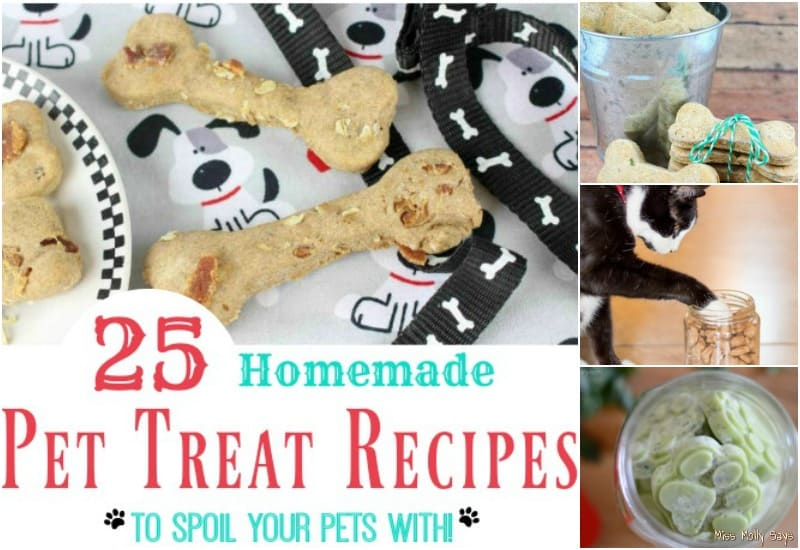 25 Homemade Pet Treat Recipes to Spoil Your Pets With!