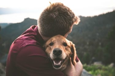 A Guide To Starting A Pet Based Business You're Passionate About