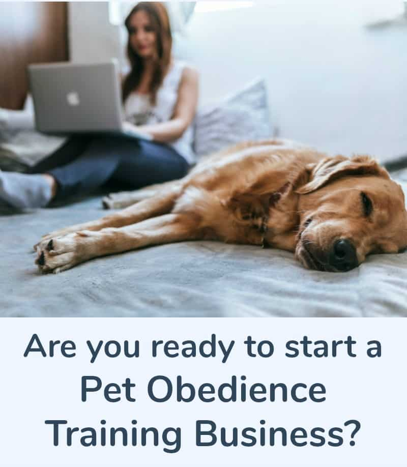 Are You Ready To Start A Pet Obedience Training Business