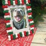 DIY Dog Bone Picture Frame