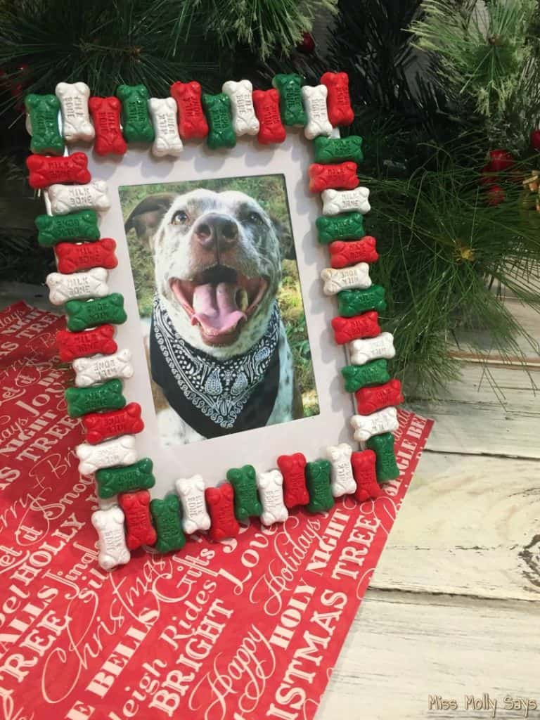 DIY Dog Bone Picture Frame