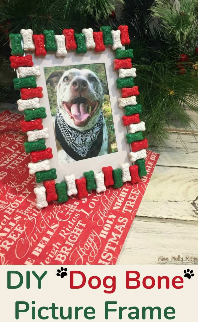 A Diy Dog Bone Picture Frame Is The Perfect Christmas Gift For Pet