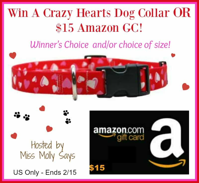 Crazy Hearts Dog Collar or $15 Amazon GC Giveaway