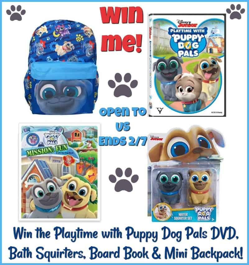 Win a Puppy Dog Pals Prize Pack!