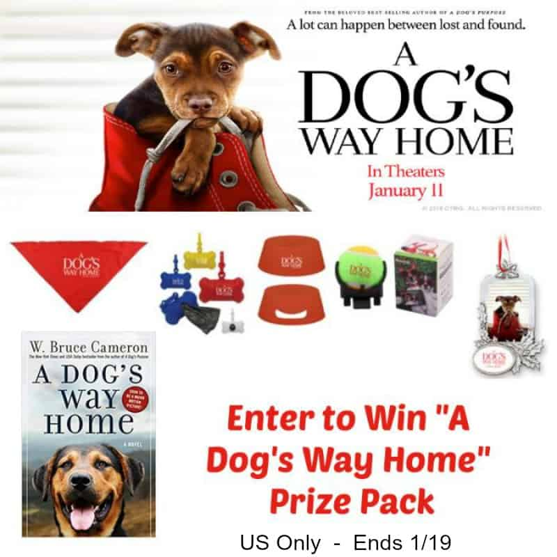 #Win A Dog's Way Home DVD & Book! #Adogswayhome