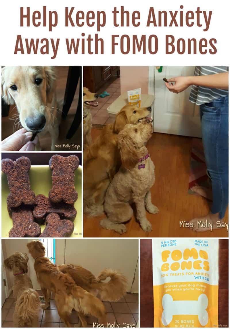 Help Keep the Anxiety Away with FOMO Bones