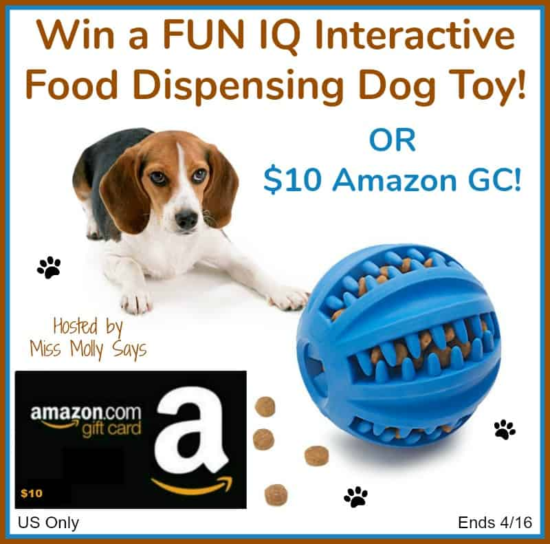 "#Win a FUN IQ Interactive Food Dispensing Dog Toy OR $10 Amazon GC in our ""Rain Rain Go Away"" Giveaway Hop!"